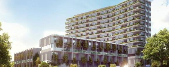 Auckland Property Developments